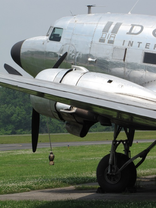 N4550J at Knoxville, 2010. Note the suspended owl figurine, intended to keep birds away from the engines.